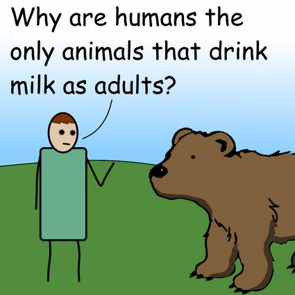 Milk and bears by Pipanni